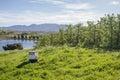 Bee Box near Pear Trees Royalty Free Stock Photo