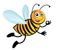 Bee cute cartoon bees Stock Image