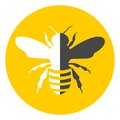 Bee icon black and white