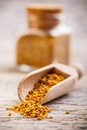 Bee pollen Stock Photography