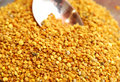 Bee pollen Stock Image
