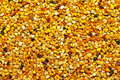 Bee pollen background Royalty Free Stock Image