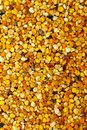 Bee pollen big bunch of granules texture Stock Photos