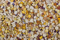 Bee pollen granules colorful macro for background Stock Images