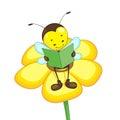 Bee Reading on Flower