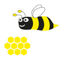 Bee on a white background vector Stock Image