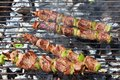 Beef brochette on barbecue Royalty Free Stock Photo
