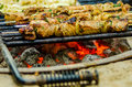 Beef kababs on the grill closeup at camping site Stock Photography