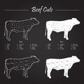 Beef meat cuts scheme set of diagram white on blackboard Stock Photography