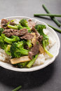 Beef N' Broccoli Stir Fry vertical slightly above shot Royalty Free Stock Photo