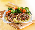 Beef and noodles japanese teriyaki dish Royalty Free Stock Photo