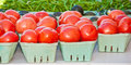 Beef stake tomatoes and string beans displayed at a tropical  farmers market Royalty Free Stock Photo