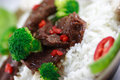 Beef stir fry macro Royalty Free Stock Photo