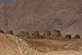 The Beehve tombs at Jabal Misht, Sultanate of Oman Royalty Free Stock Photos