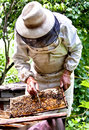 Beekeeper Royalty Free Stock Photo
