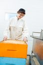 Beekeeper arranging honeycomb frames senior female in crate at factory Royalty Free Stock Image