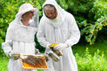 Beekeeper controlling beeyard and bees with smoker beehive comb frame Royalty Free Stock Photos