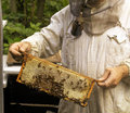 Beekeeper with honeycomb Royalty Free Stock Photo