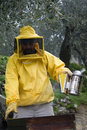 Beekeeper opened beehive Stock Photo