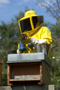 Beekeeper at Work Royalty Free Stock Photo