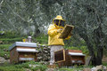Beekeeper working Stock Photos
