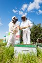 Beekeepers working at apiary in protective clothing together Stock Photo