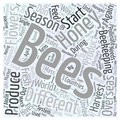 Beekeeping in different areas of the world word cloud concept background
