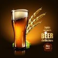 Beer advertising design. Highly realistic illustration with the