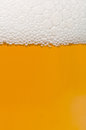 Beer background closeup of glass of with foam shallow depth of field Stock Images