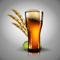 Beer background. Highly realistic illustration with the effect o