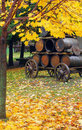 Beer barrels in the fall Royalty Free Stock Photos