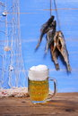 Beer on blue background with dried rudd fish and fishing net Royalty Free Stock Image