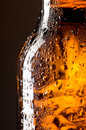 Beer bottle Stock Images