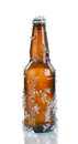 Beer bottle with ice and condensation on white background full covered layout in vertical format isolated reflection Stock Image