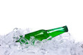 Beer bottle in ice cubes Royalty Free Stock Photography