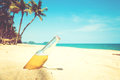 Beer bottle on a sandy beach with palm tree. Royalty Free Stock Photo