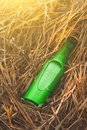 Beer bottle in the stack of hay Royalty Free Stock Photo