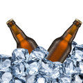 Beer Bottles and Ice Cubes Royalty Free Stock Photo