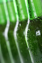 Beer bottles in a row cold beverage with alcohol Royalty Free Stock Photography