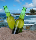 Beer bottles in the sand closeup of two with a tropical ocean background square format are covered with condensation Royalty Free Stock Image