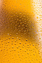 Beer bottles with water droplets background Royalty Free Stock Photo