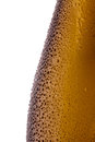 Beer bottles with water droplets close-up on white background. Royalty Free Stock Photo