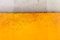 Beer bubbles closeup Royalty Free Stock Photo