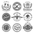 Beer emblem set round or label with descriptions of locally brewed craft premium quality vector illustration Royalty Free Stock Image