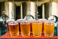 Beer flight Royalty Free Stock Photo