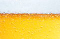 Beer an Foam. Royalty Free Stock Photo