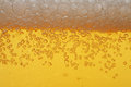 Beer foam macro Stock Image