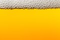 Beer with foam. Macro Royalty Free Stock Photo