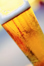 Beer glass close up on a refreshing with bubbles and froth over a blurred background Royalty Free Stock Photos