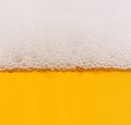 Beer in glass closeup shot Royalty Free Stock Photo